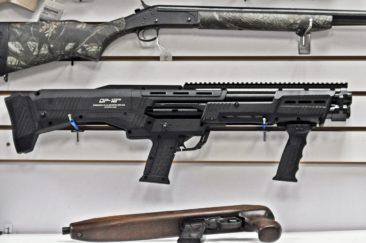 DP-12 Shotgun!